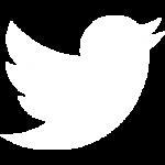 twitter-marketing-services